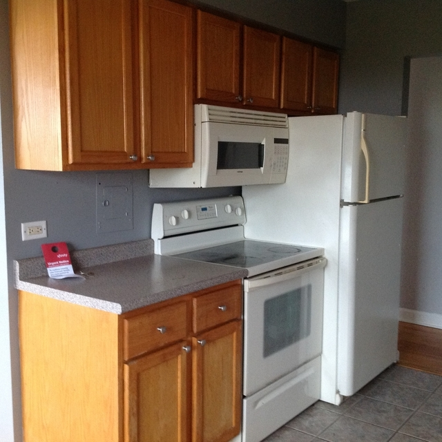 1 Bedroom, Rogers Park Rental in Chicago, IL for $1,000 - Photo 2