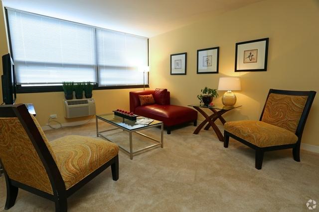 Studio, Margate Park Rental in Chicago, IL for $1,000 - Photo 1