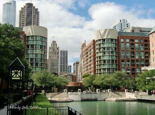1 Bedroom, Streeterville Rental in Chicago, IL for $1,825 - Photo 1