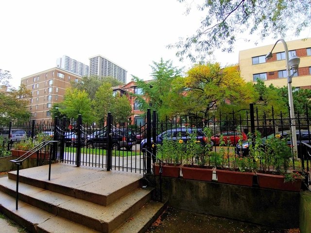 1 Bedroom, Edgewater Beach Rental in Chicago, IL for $900 - Photo 2