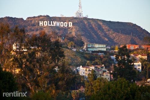 2 Bedrooms, Hollywood Hills West Rental in Los Angeles, CA for $2,744 - Photo 2
