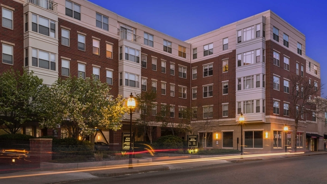 1 Bedroom, South Side Rental in Boston, MA for $2,525 - Photo 2