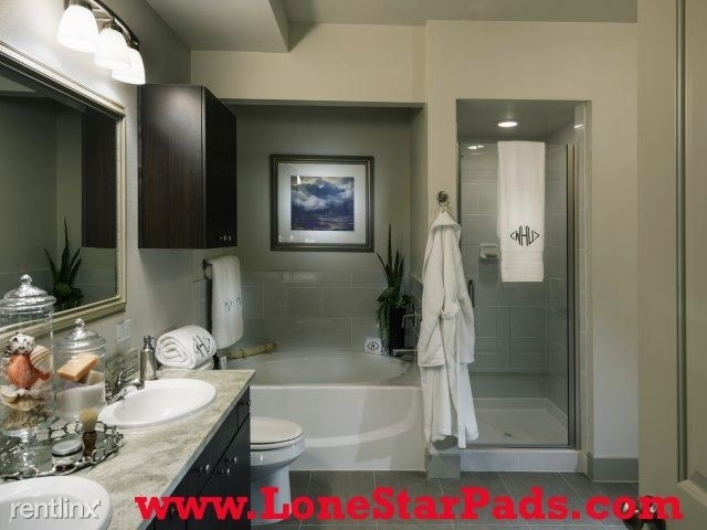 1 Bedroom, Greenway - Upper Kirby Rental in Houston for $1,409 - Photo 2