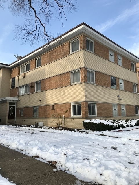 3 Bedrooms, Oak Park Rental in Chicago, IL for $1,900 - Photo 1