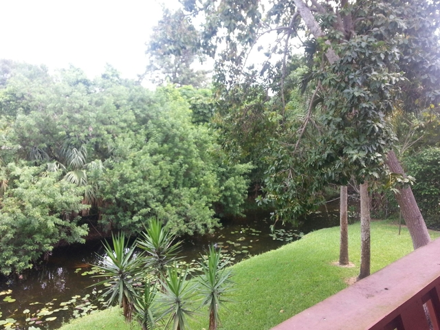 1 Bedroom, Forest Hills Rental in Miami, FL for $1,200 - Photo 1