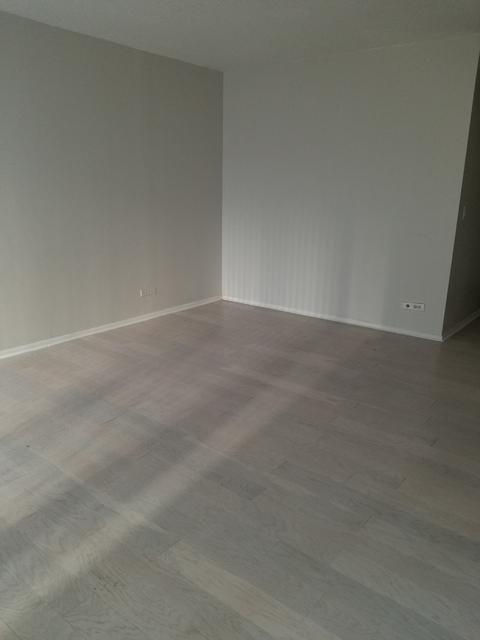 Studio, Gold Coast Rental in Chicago, IL for $1,400 - Photo 2