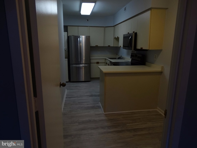2 Bedrooms, Crystal City Shops Rental in Washington, DC for $2,600 - Photo 2