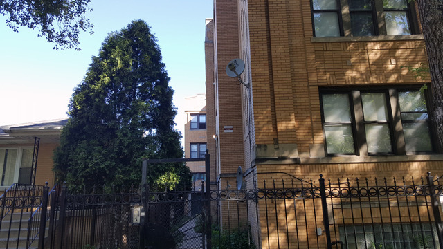 2 Bedrooms, Logan Square Rental in Chicago, IL for $1,350 - Photo 1