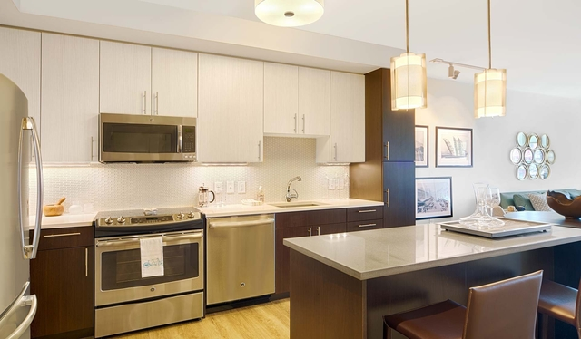 3 Bedrooms, Downtown Boston Rental in Boston, MA for $5,986 - Photo 1