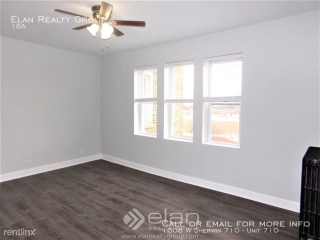 Studio, Rogers Park Rental in Chicago, IL for $1,200 - Photo 1