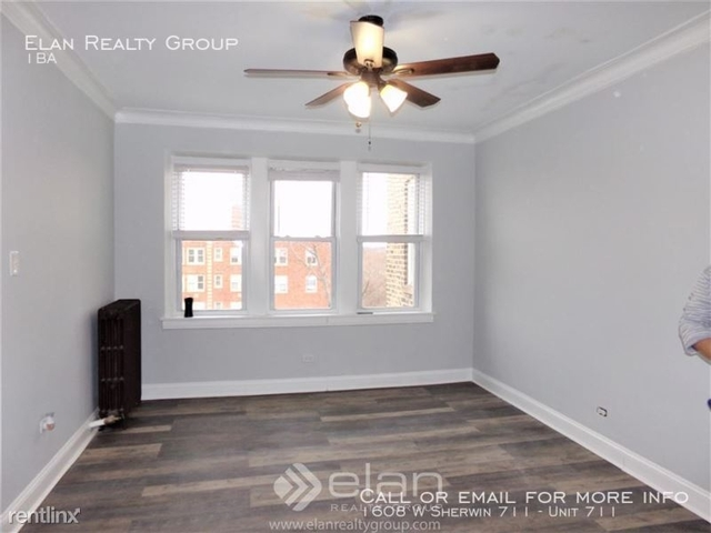 Studio, Rogers Park Rental in Chicago, IL for $1,025 - Photo 1