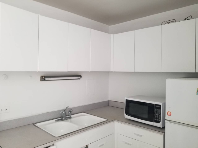Studio, Hyde Park Rental in Chicago, IL for $900 - Photo 2