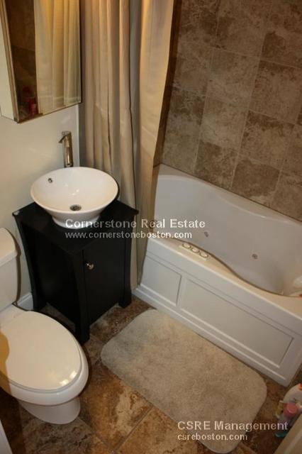 3 Bedrooms, Lower Roxbury Rental in Boston, MA for $3,750 - Photo 1