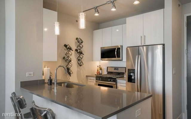 1 Bedroom, South Loop Rental in Chicago, IL for $2,551 - Photo 2
