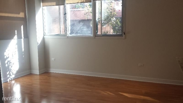 2 Bedrooms, Fulton River District Rental in Chicago, IL for $2,850 - Photo 2