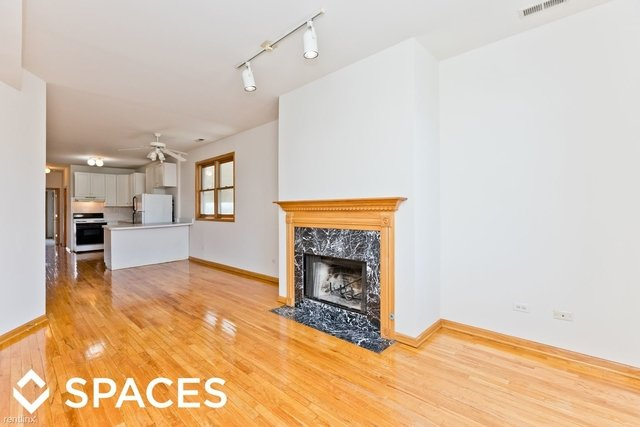 3 Bedrooms, West Town Rental in Chicago, IL for $2,500 - Photo 1