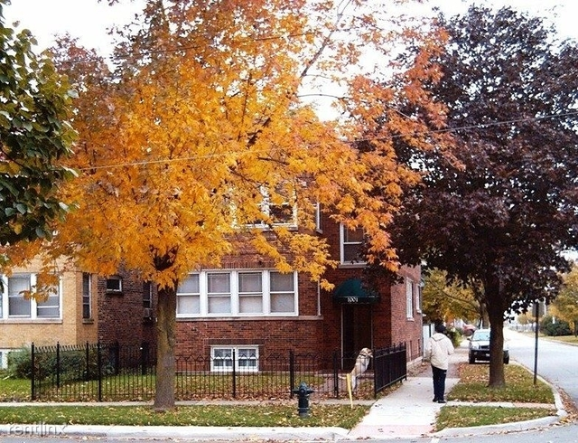 2 Bedrooms, Oak Park Rental in Chicago, IL for $1,395 - Photo 1