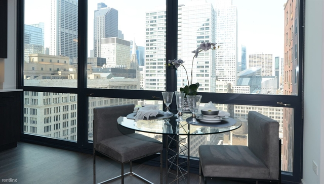 2 Bedrooms, The Loop Rental in Chicago, IL for $3,999 - Photo 2