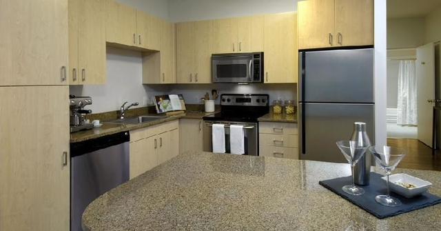 1 Bedroom, Downtown Boston Rental in Boston, MA for $3,455 - Photo 2