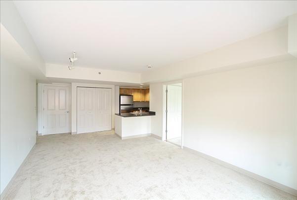 1 Bedroom, North Cambridge Rental in Boston, MA for $2,411 - Photo 2
