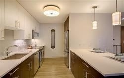 2 Bedrooms, Downtown Boston Rental in Boston, MA for $4,350 - Photo 2