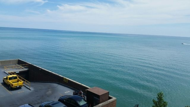 1 Bedroom, Edgewater Beach Rental in Chicago, IL for $1,600 - Photo 2