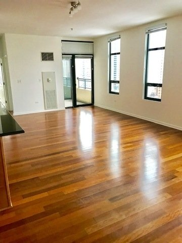 3 Bedrooms, South Loop Rental in Chicago, IL for $3,675 - Photo 2