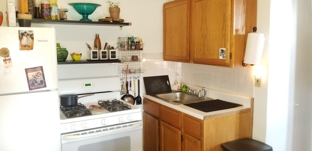 1 Bedroom, South Loop Rental in Chicago, IL for $1,350 - Photo 2