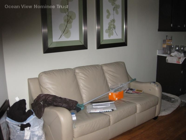 1 Bedroom, Waterfront Rental in Boston, MA for $2,350 - Photo 2