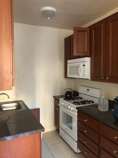 1 Bedroom, Hyde Park Rental in Chicago, IL for $1,100 - Photo 1