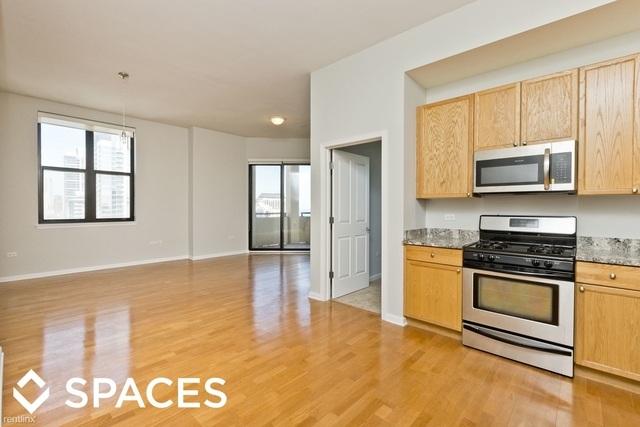 3 Bedrooms, South Loop Rental in Chicago, IL for $3,690 - Photo 1