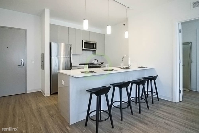 2 Bedrooms, Greektown Rental in Chicago, IL for $3,637 - Photo 1