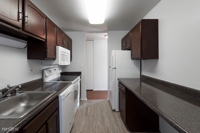 2 Bedrooms, Gold Coast Rental in Chicago, IL for $3,666 - Photo 1