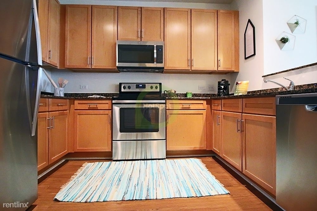1 Bedroom, South Loop Rental in Chicago, IL for $1,935 - Photo 1
