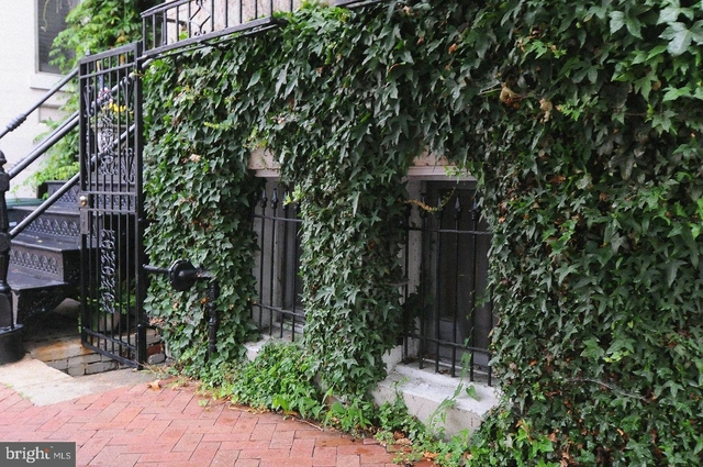 Studio, East Village Rental in Washington, DC for $1,600 - Photo 2