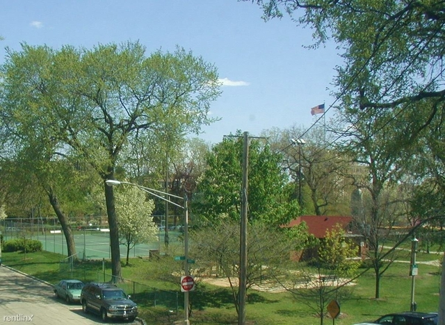 2 Bedrooms, Oak Park Rental in Chicago, IL for $1,450 - Photo 2