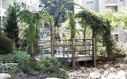 3 Bedrooms, North Atlanta Rental in Atlanta, GA for $2,140 - Photo 1