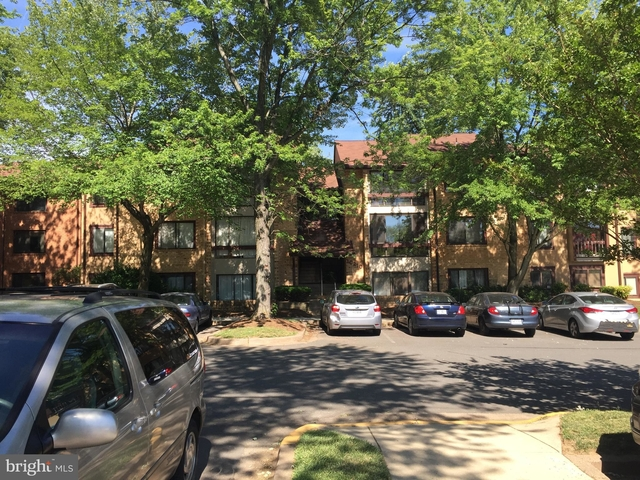 2 Bedrooms, Oakton Rental in Washington, DC for $1,800 - Photo 2