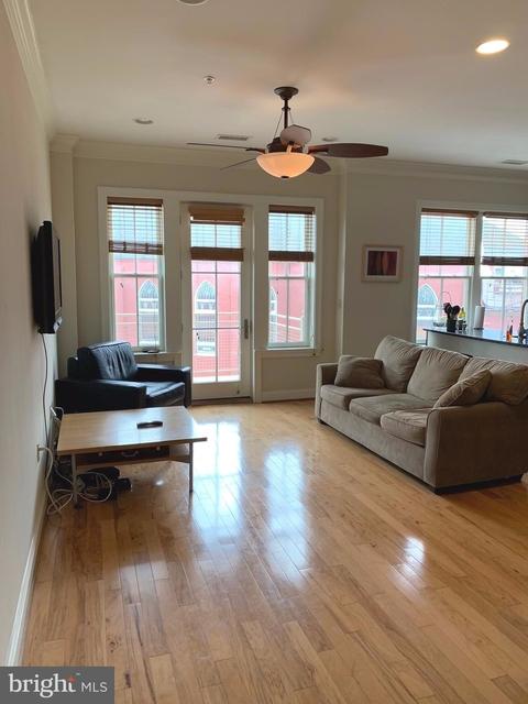 2 Bedrooms, Logan Circle - Shaw Rental in Washington, DC for $4,500 - Photo 2