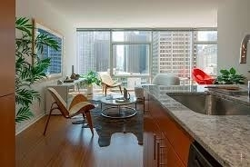 2 Bedrooms, Streeterville Rental in Chicago, IL for $3,438 - Photo 1