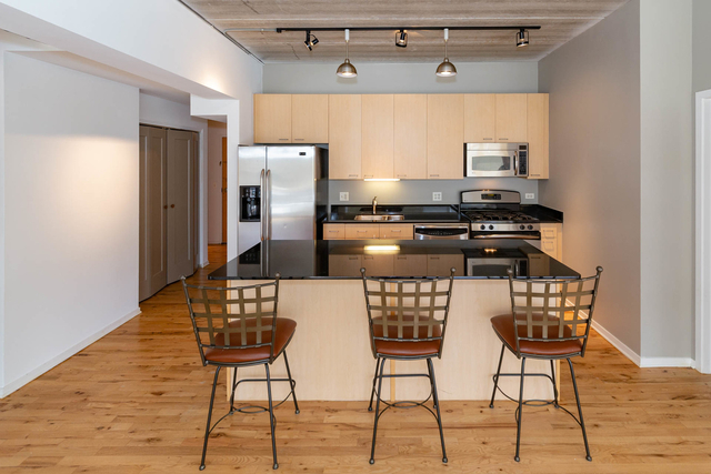 3 Bedrooms, South Loop Rental in Chicago, IL for $3,300 - Photo 2