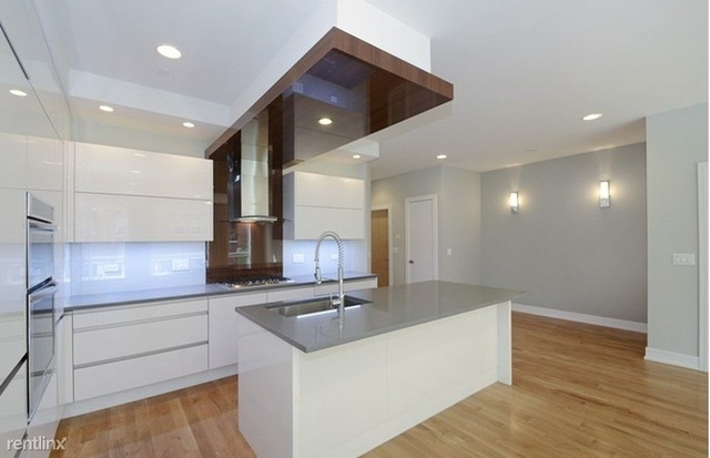 2 Bedrooms, Goose Island Rental in Chicago, IL for $1,000 - Photo 2