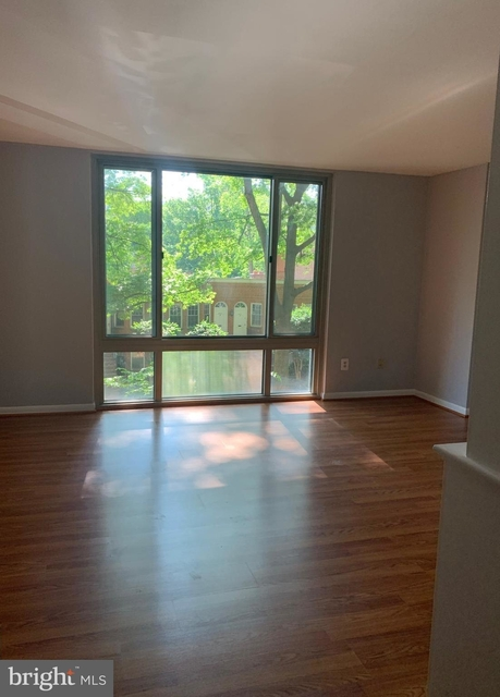 1 Bedroom, Foggy Bottom Rental in Washington, DC for $2,500 - Photo 1