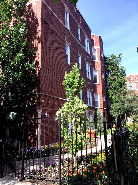 1 Bedroom, Ravenswood Rental in Chicago, IL for $1,550 - Photo 1