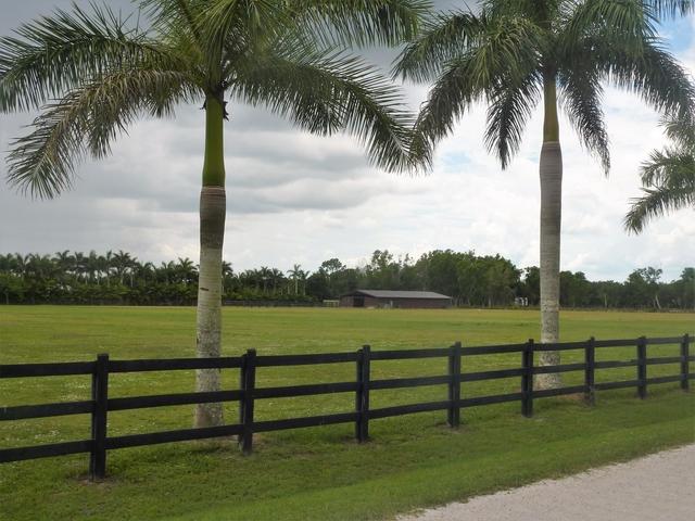 1 Bedroom, Wellington Rental in Miami, FL for $40,000 - Photo 1