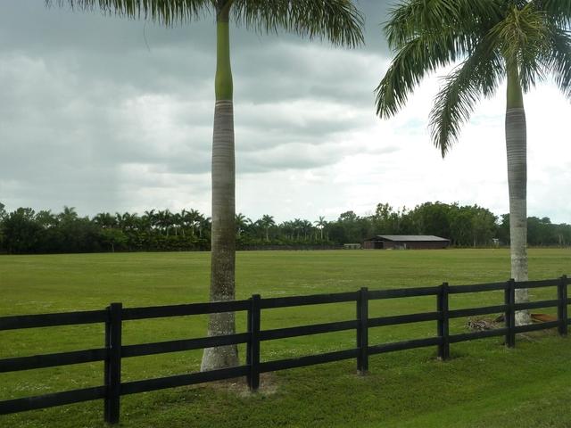 1 Bedroom, Wellington Rental in Miami, FL for $40,000 - Photo 2