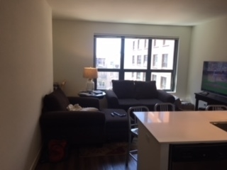 1 Bedroom, Near West Side Rental in Chicago, IL for $2,450 - Photo 2