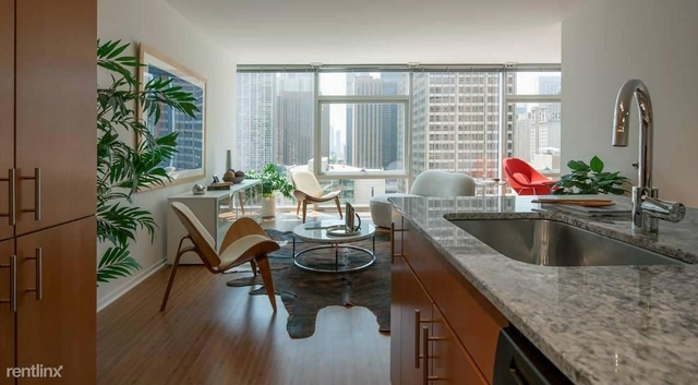 2 Bedrooms, Streeterville Rental in Chicago, IL for $3,864 - Photo 2