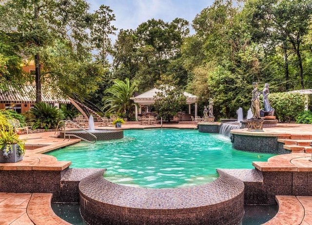 5 Bedrooms, Grogan's Mill Rental in Houston for $15,000 - Photo 1