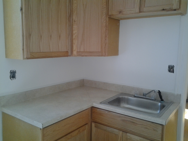 1 Bedroom, South Shore Rental in Chicago, IL for $800 - Photo 2